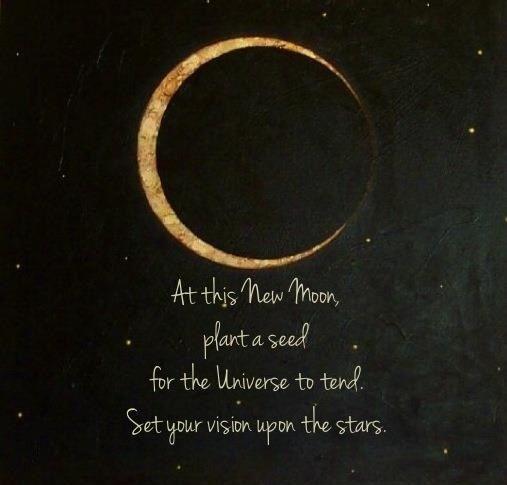 new moon seed